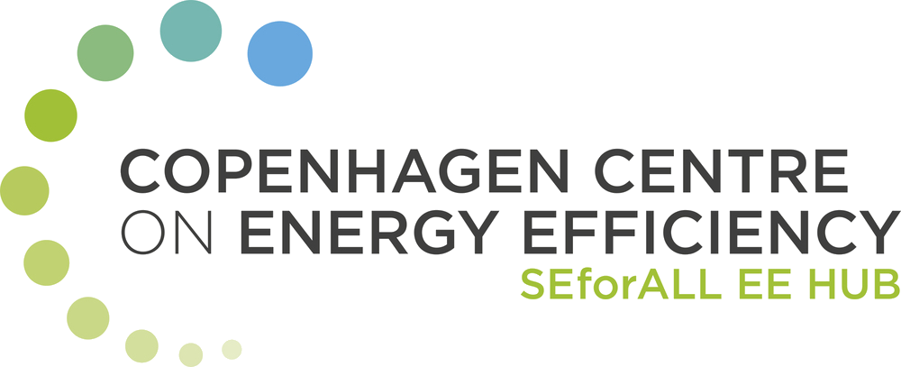 Participe do Seminário Online sobre Eficiência Energética na Argentina