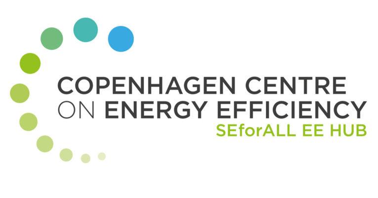 Participe del Seminario Online sobre Eficiencia Energética en Argentina