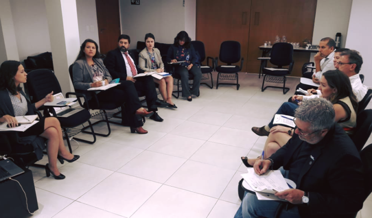 Representantes del Comité Nacional de Brasil debaten la estrategia del país para limitar el cambio climático