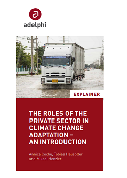 The Roles of the Private Sector in Climate Change Adaptation – an Introduction